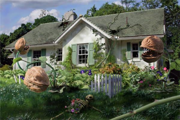 Vegetative State by DavidofArbela - Fotolia Stockpocalypse Challenge